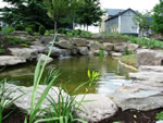Natural Stone Pond